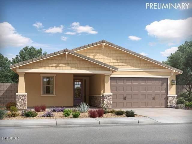 14335 W Eugene Terrace, Surprise, AZ 85379 (MLS #5968547) :: CC & Co. Real Estate Team