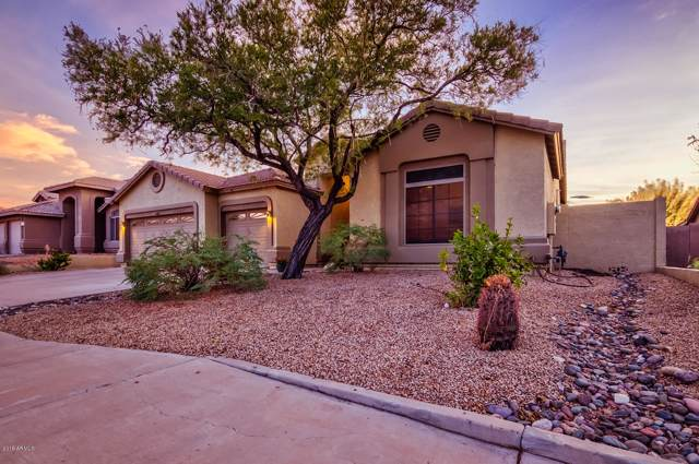 11402 S Obispo Drive, Goodyear, AZ 85338 (MLS #5968672) :: The Garcia Group