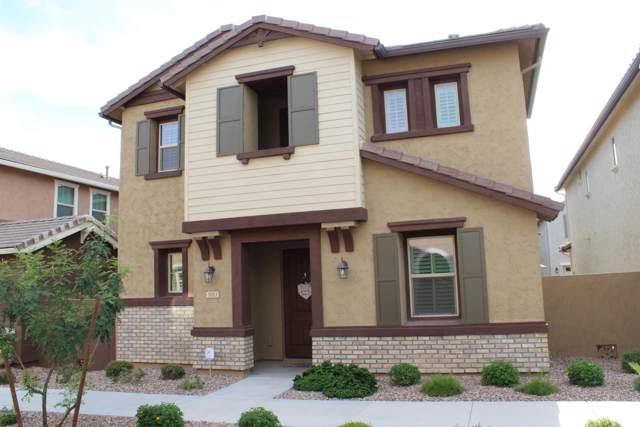 3683 E Perkinsville Street, Gilbert, AZ 85295 (MLS #5968800) :: Yost Realty Group at RE/MAX Casa Grande