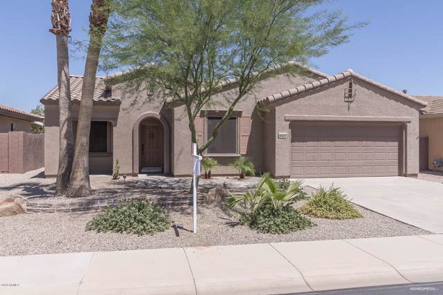 16654 W Loma Verde Trail, Surprise, AZ 85387 (MLS #5968811) :: Yost Realty Group at RE/MAX Casa Grande