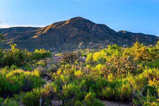 40853 N 108TH Way, Scottsdale, AZ 85262 (MLS #5968821) :: The W Group