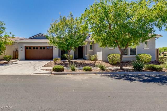 3505 E Bart Street, Gilbert, AZ 85295 (MLS #5968866) :: Yost Realty Group at RE/MAX Casa Grande