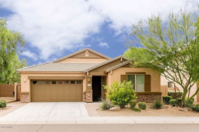 23127 N 40TH Way, Phoenix, AZ 85050 (MLS #5968869) :: CC & Co. Real Estate Team