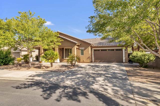 19188 E Macaw Drive, Queen Creek, AZ 85142 (MLS #5968874) :: CC & Co. Real Estate Team
