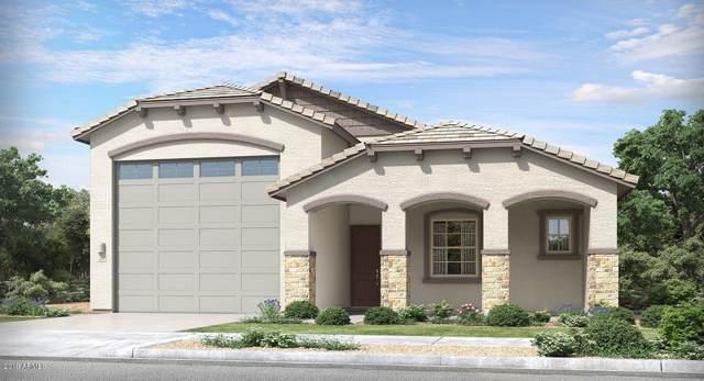 24175 N 169TH Drive, Surprise, AZ 85387 (MLS #5968887) :: CC & Co. Real Estate Team