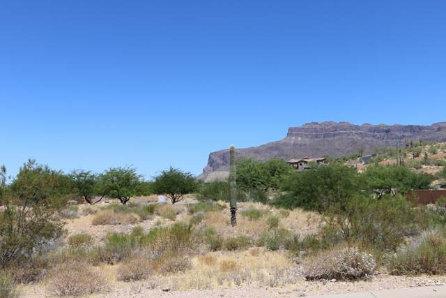 8792 E Quail Cove Lane, Gold Canyon, AZ 85118 (MLS #5968982) :: Revelation Real Estate