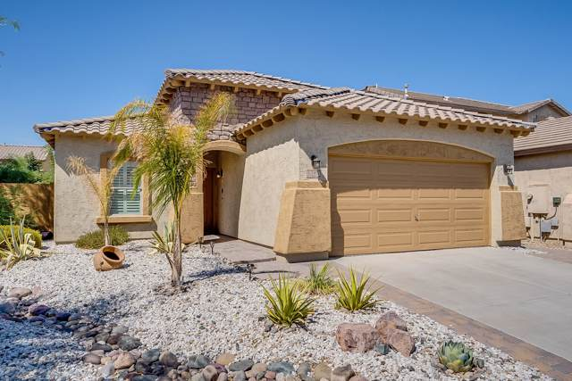 18520 W Sanna Street, Waddell, AZ 85355 (MLS #5969016) :: Conway Real Estate