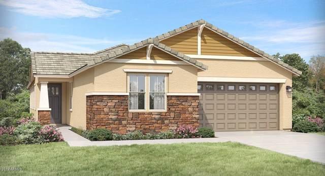 12679 N 145TH Drive, Surprise, AZ 85379 (MLS #5969024) :: Revelation Real Estate