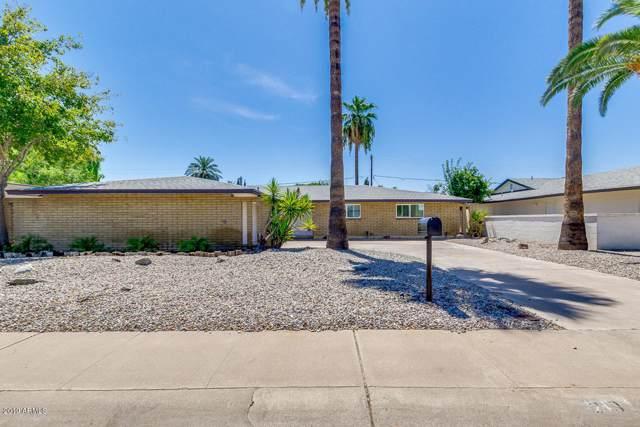 213 E El Caminito Drive, Phoenix, AZ 85020 (MLS #5969092) :: The AZ Performance Realty Team