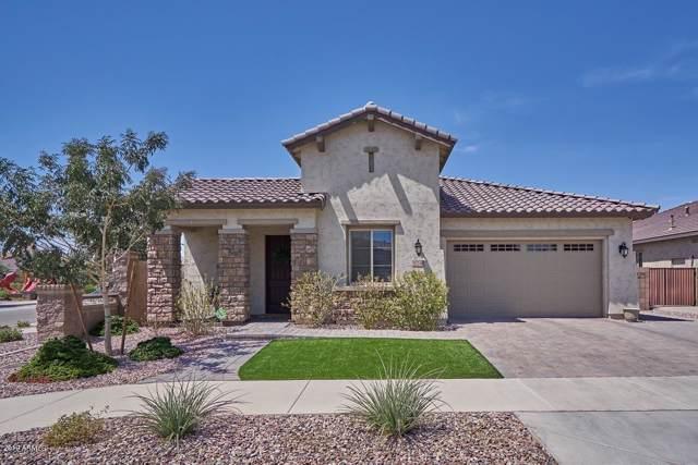 20248 E Hummingbird Drive, Queen Creek, AZ 85142 (MLS #5969125) :: CC & Co. Real Estate Team