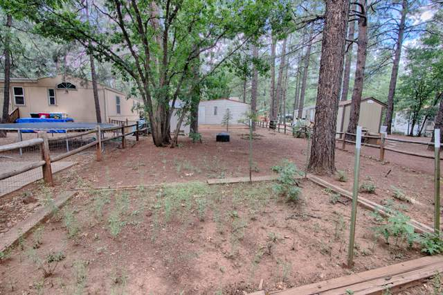 5220 S Blue Ridge Loop, Pinetop, AZ 85935 (MLS #5969127) :: Phoenix Property Group