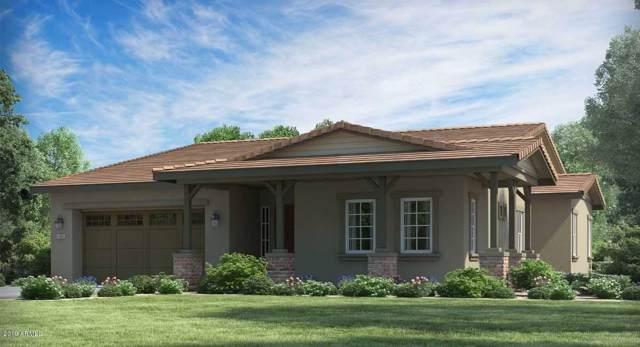 20667 W Clearstream Drive, Buckeye, AZ 85396 (MLS #5969135) :: The Garcia Group