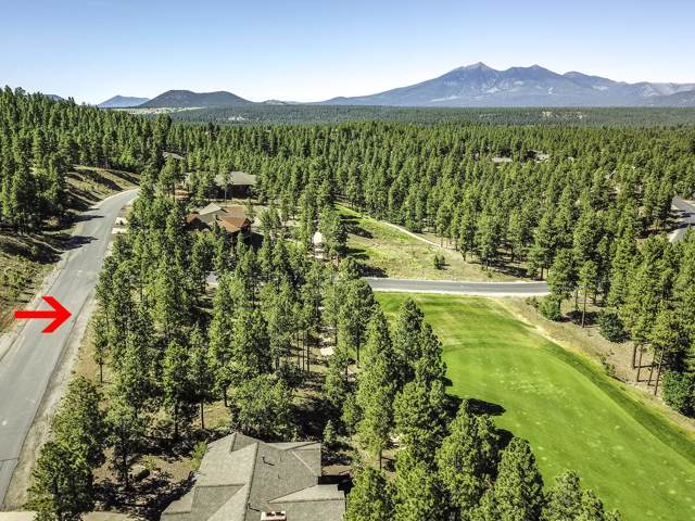 4520 S Saddle Horn, Flagstaff, AZ 86005 (MLS #5969150) :: The Kenny Klaus Team