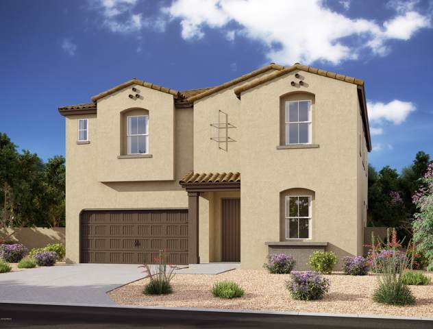 643 W Wind Cave Drive, San Tan Valley, AZ 85140 (MLS #5969207) :: CANAM Realty Group
