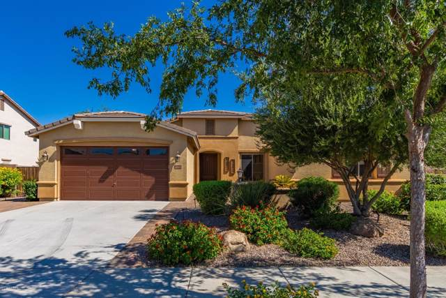 76 W Lynx Way, Chandler, AZ 85248 (MLS #5969233) :: Revelation Real Estate