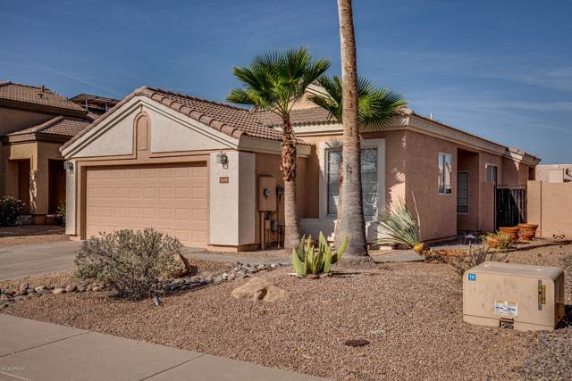 2438 N 131ST Lane, Goodyear, AZ 85395 (MLS #5969267) :: Cindy & Co at My Home Group