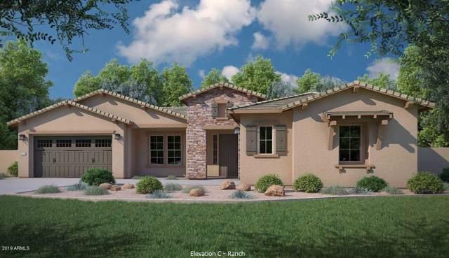 7649 W Adela Drive, Peoria, AZ 85383 (MLS #5969316) :: The Kenny Klaus Team