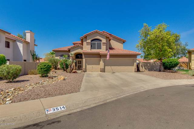 3514 N Heather Lane, Avondale, AZ 85392 (MLS #5969332) :: Team Wilson Real Estate