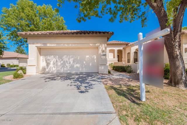 23801 S Serenity Way, Sun Lakes, AZ 85248 (MLS #5969399) :: Revelation Real Estate