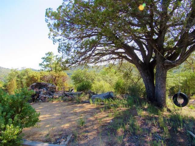6518 E Mountain View Road, Crown King, AZ 86343 (MLS #5969408) :: Phoenix Property Group