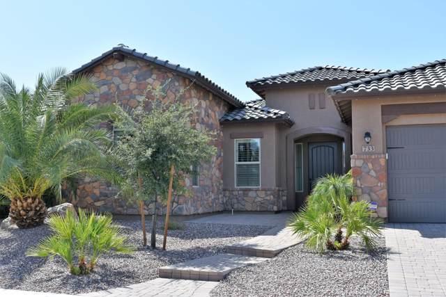 733 W Armstrong Way, Chandler, AZ 85286 (MLS #5969441) :: Revelation Real Estate