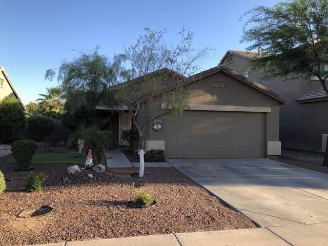 35951 W Costa Blanca Drive, Maricopa, AZ 85138 (MLS #5969470) :: Revelation Real Estate