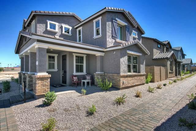 144 N 56TH Place, Mesa, AZ 85205 (MLS #5969648) :: Yost Realty Group at RE/MAX Casa Grande