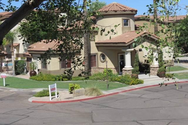 10136 E Southern Avenue #2046, Mesa, AZ 85209 (MLS #5969704) :: Yost Realty Group at RE/MAX Casa Grande
