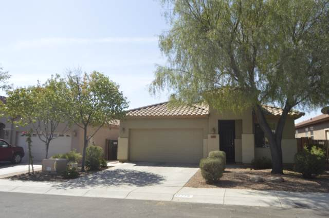 17779 W Young Street, Surprise, AZ 85388 (MLS #5969719) :: The Property Partners at eXp Realty