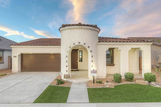 22630 E Creosote Drive, Queen Creek, AZ 85142 (MLS #5969742) :: Openshaw Real Estate Group in partnership with The Jesse Herfel Real Estate Group