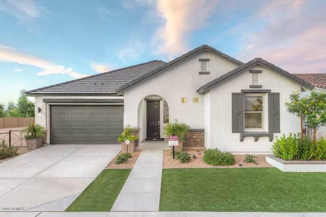 22624 E Creosote Drive, Queen Creek, AZ 85142 (MLS #5969755) :: Keller Williams Realty Phoenix