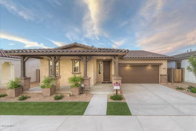 22636 E Creosote Drive, Queen Creek, AZ 85142 (MLS #5969770) :: Keller Williams Realty Phoenix