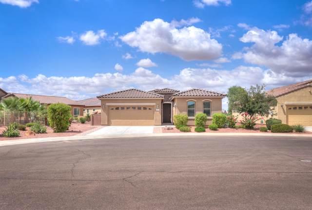 20338 N Winter Escape Court, Maricopa, AZ 85138 (MLS #5969772) :: Nate Martinez Team