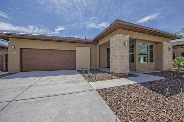 13241 W Hummingbird Terrace, Peoria, AZ 85383 (MLS #5969795) :: Nate Martinez Team