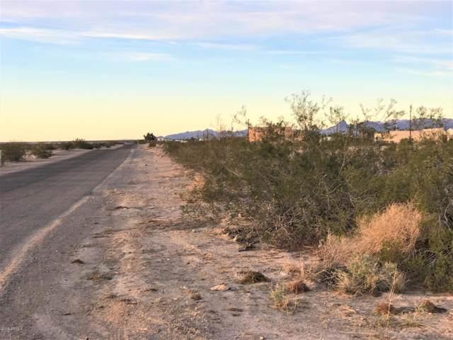 12867 S Cerro Colorado Drive, Topock, AZ 86436 (MLS #5969808) :: Keller Williams Realty Phoenix