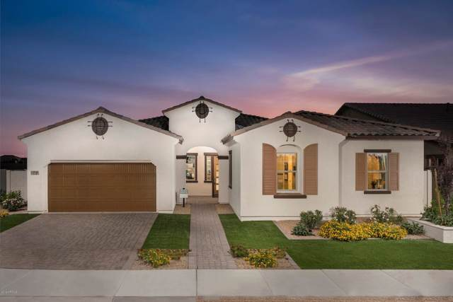 22854 E Sonoqui Boulevard, Queen Creek, AZ 85142 (MLS #5969829) :: CANAM Realty Group