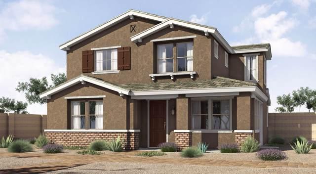 146 N 56TH Place, Mesa, AZ 85205 (MLS #5969838) :: CANAM Realty Group