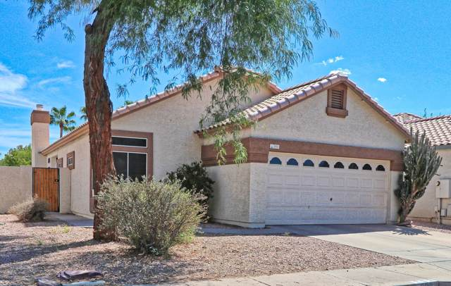 293 W Amoroso Drive, Gilbert, AZ 85233 (MLS #5969903) :: CANAM Realty Group