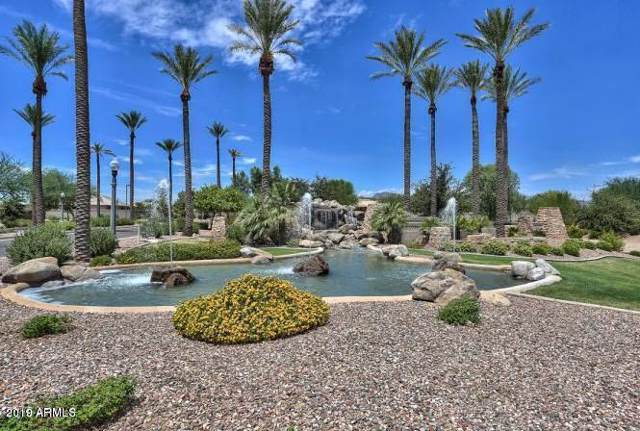 18115 W Palo Verde Court, Litchfield Park, AZ 85340 (MLS #5969977) :: The Carin Nguyen Team