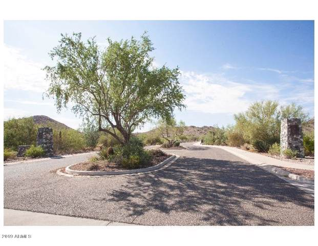 21354 W Jojoba Court, Buckeye, AZ 85396 (MLS #5970121) :: RE/MAX Desert Showcase