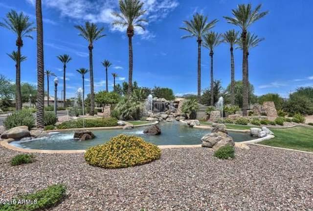 18217 W Palo Verde Court, Litchfield Park, AZ 85340 (MLS #5970170) :: Lifestyle Partners Team