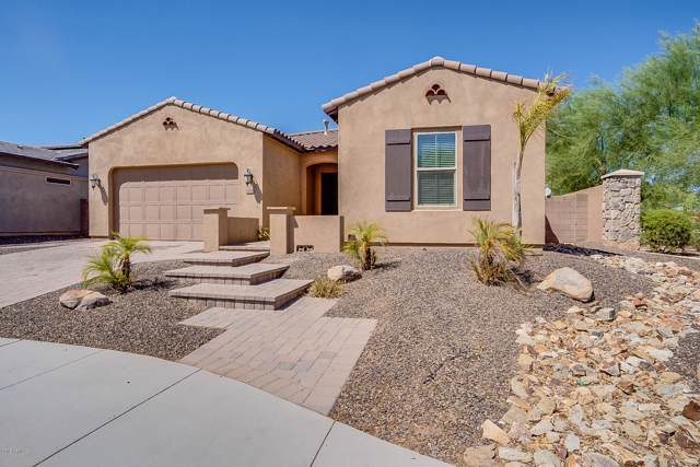 15884 W Cameron Drive, Surprise, AZ 85379 (MLS #5970736) :: The Kenny Klaus Team