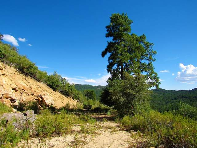 22950 S Towers Mountain Road, Crown King, AZ 86343 (MLS #5970858) :: Conway Real Estate