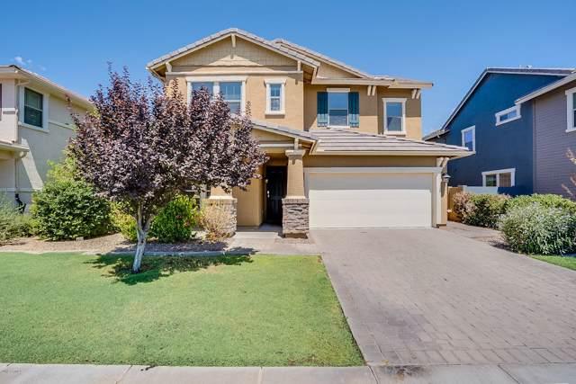 3548 E Mesquite Street, Gilbert, AZ 85296 (MLS #5971342) :: Revelation Real Estate