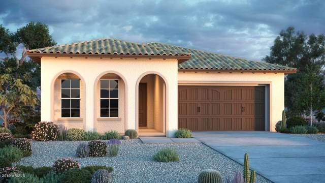 20824 E Reins Road, Queen Creek, AZ 85142 (MLS #5971345) :: Revelation Real Estate