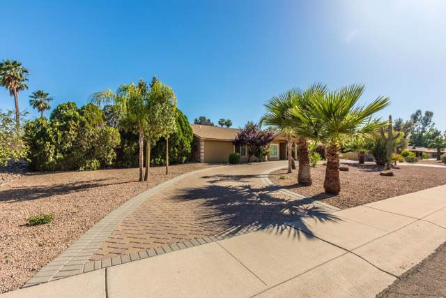 6313 W Larkspur Drive, Glendale, AZ 85304 (MLS #5971476) :: The Kenny Klaus Team