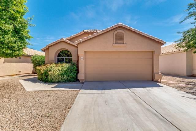 1143 W Sparrow Drive, Chandler, AZ 85286 (MLS #5971480) :: The W Group