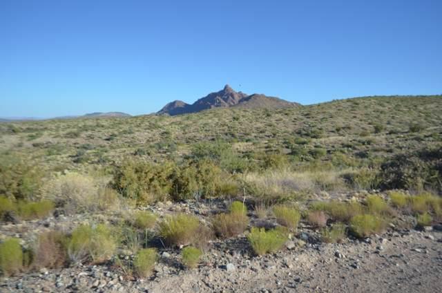 26 S Cattle Call Road, Kirkland, AZ 86332 (MLS #5972479) :: Riddle Realty Group - Keller Williams Arizona Realty