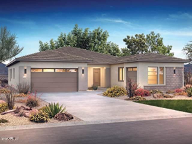13198 W Caleb Road, Peoria, AZ 85383 (MLS #5972548) :: Lucido Agency