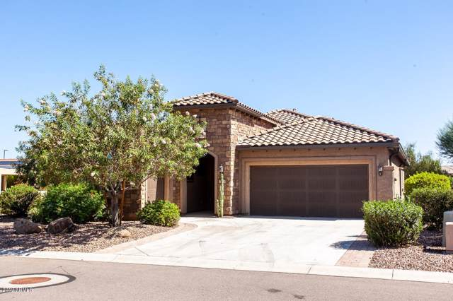 7244 W Autumn Vista Way, Florence, AZ 85132 (MLS #5972705) :: The W Group